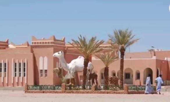 كوفيد19 بإقليم آسا الزاك